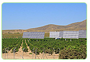 fruit orchard farms solar energy power supplies