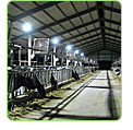 led dairy farm light