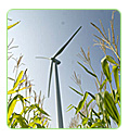 wind agriculture